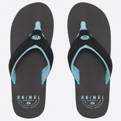Animal Mens Bazil Flip Flop - Black