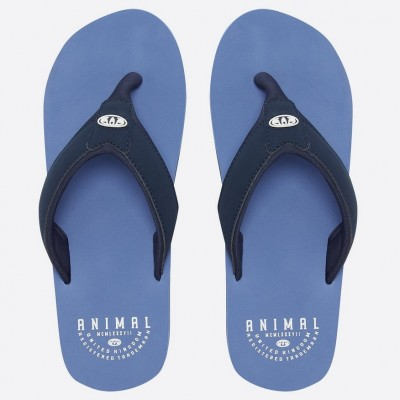 Animal Mens Bazil Flip Flop - Lethal Blue
